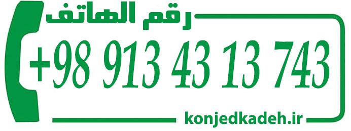 رقم الهاتف